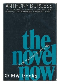 The Novel Now; a Guide to Contemporary Fiction