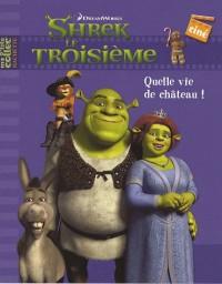 Shrek le Troisième : Quelle vie de château !