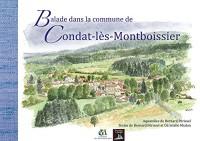 Condat-lès-Montboissier