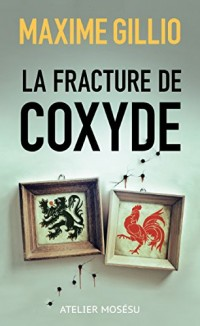 La fracture de coxyde