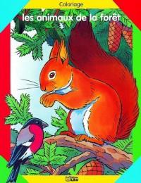 Les animaux de la forêt : Coloriage