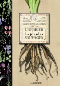 L'herbier des plantes sauvages