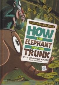 TROMPE DE L'ELEPHANT