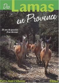 Des lamas en Provence : 20 années de passion d'un éleveur