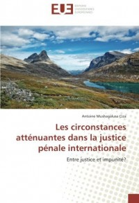Les circonstances atténuantes dans la justice pénale internationale: Entre justice et impunité?