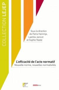 Efficacite de l'Acte Normatif (l')