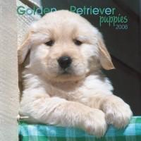 Golden Retriever Puppies 2008 Mini Wall: Mini 6x6