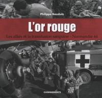 L'or rouge : Les Alliés et la transfusion sanguine, Normandie 44