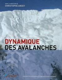 Dynamique des avalanches