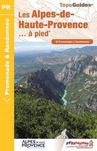 Les Alpes-de-Haute-Provence... à pied : 36 promenades & randonnées