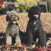 Calandrier 2012 - Waterdog portugais