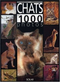 Les chats en 1000 photos