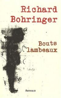 Bouts lambeaux (1DVD)