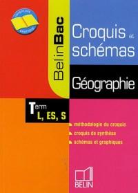 Géographie Tle L, ES : Croquis et schémas