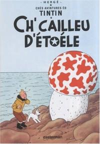Chés avintures éd Tintin : Ch'cailleu d'étoéle