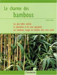 Le charme des bambous
