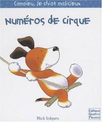 Numéros de cirque