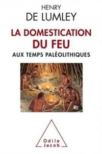 La domestication du feu aux temps paléolithiques