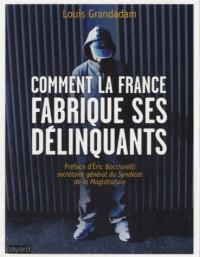 Comment la France Fabrique Ses Delinquants