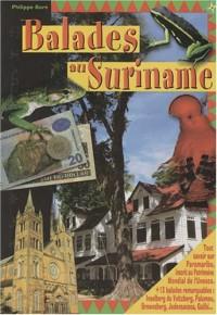 Balades au Suriname : Le guide de Paramaribo et de l'éco-tourisme au Suriname