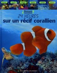 24 heures sur un récif coralien
