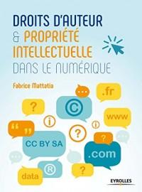 Droits d'Auteur et Propriété Intellectuelle Dans le Numerique