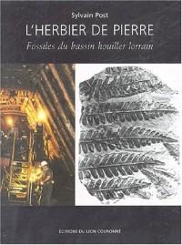 L'herbier de pierre : Fossiles du bassin houiller lorrain