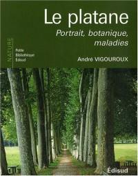 Le platane : Portrait, botanique, maladies