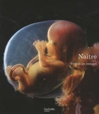 Naître : 9 mois en images