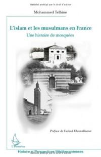 L'islam et les musulmans en France : Une histoire de mosquées