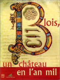 Blois : l'an mil