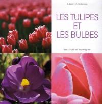 Les tulipes et les bulbes
