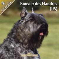 Bouvier Des Flandres (us) 16 Mois 2011 Calendrier