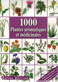 1000 Plantes Aromatiques et Medicinales