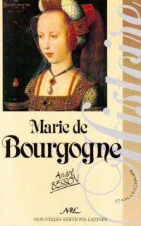 Marie de Bourgogne: La princesse aux chaînes