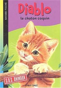 Diablo le chaton coquin