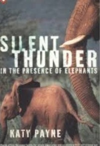 Silent Thunder In the Presence of Elepha