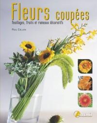 Fleurs coupées : Feuillages, fruits et rameaux décoratifs