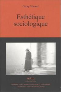 Esthétique sociologique