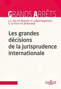 Les grandes décisions de la jurisprudence internationale - Nouveauté