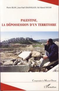 Palestine la Depossession d'un Territoire