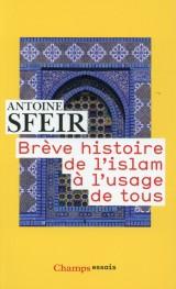 Brève histoire de l'islam à l'usage de tous [Poche]