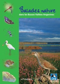 Balades Nature Dans les Basses Vallees Angevines
