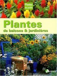 Plantes de balcon et jardinières