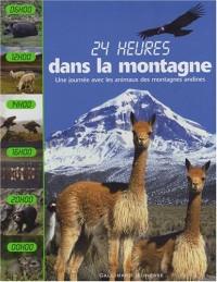 24 heures dans la montagne : Une journée avec les animaux des montagnes andines