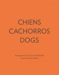 Chiens : Edition français-anglais-portugais
