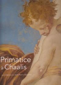 Primatice a Chaalis (Broche).