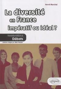 La diversité en France - impératif ou idéal