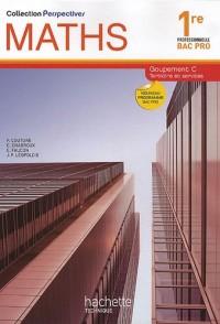 Maths 1e professionnelle Bac Pro Groupement C Tertiaire et services : Nouveau programme