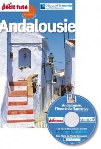 Le Petit Futé Andalousie (1DVD)